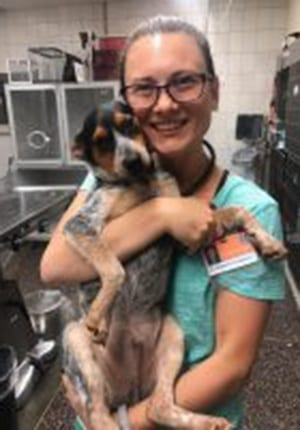animal-emergency-specialty-center-clinician-natalia-hodgson